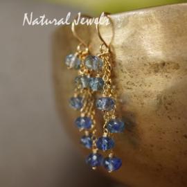 Gereserveerd - Blauwe edelsteen oorbellen in goud