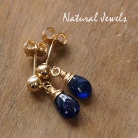 Gereserveerd - gouden oorstekers met Saffiertjes