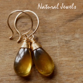 Gouden oorbellen Honingkleurige Apatiet