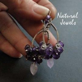 Pretty Bunch of Purple
