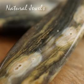 Oceaan Jaspis oorbellen goud
