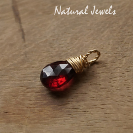 Goldfilled hangertje Red Garnet