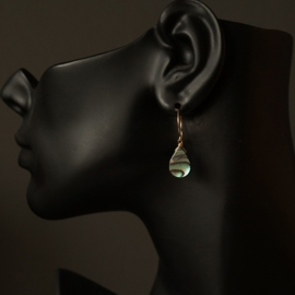 14K Goldfilled oorbellen met Abalone