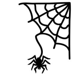 Raamsticker spin met web (statische raamfolie)