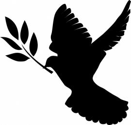 duif met tak - prijs vanaf