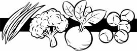 N6-254 keuken sticker ( groente ) prijs vanaf