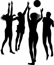 A2-019  groep volleybal prijs vanaf