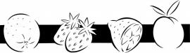 N6-252 keuken sticker ( fruit ) prijs vanaf