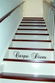 trapsticker: Carpe Diem