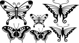 vlinder set 2 van 6 vlinders