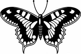 vlinder deco4-153 prijs vanaf