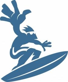 C4-209 surfer op board  prijs vanaf