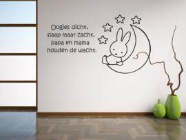 Miffy auf Mond Nr.3