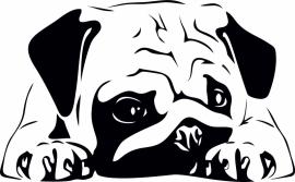 Sticker Mops hond liggend