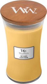 Oat Flower Large Candle WoodWick®