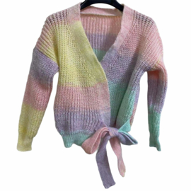 Multicolor knitted vest