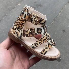 Leopard printed sandals