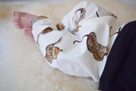 Tiger baby harem