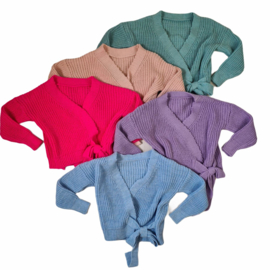 5 colors knitted vest