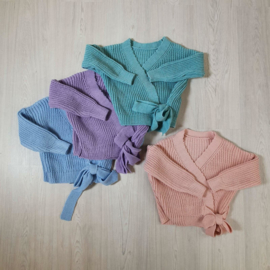 4 colors knitted vest