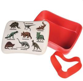 Bamboe lunchbox Dinosaurus