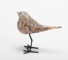 Vogel in glas