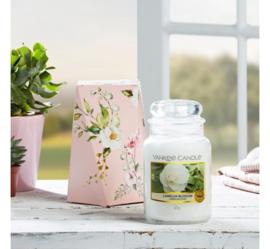 Yankee candle, Camellia Blossom, Jar large