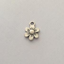 Bedel bloem