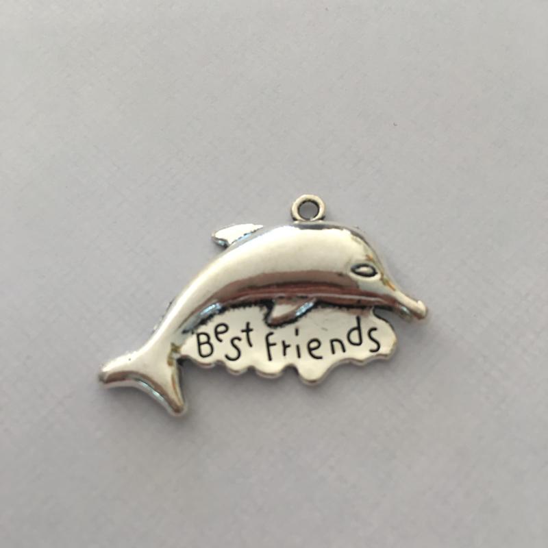 Bedel extra groot dolfijn best friends