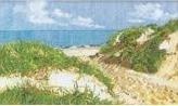Duinen - Dunes