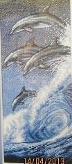 Four Dolphins  aida