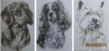 DMC - Dachshund - King Charles Spaniel - West Highland Terrier