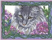 Cross My Haeart - Jasper - Fur & Flowers - Cat