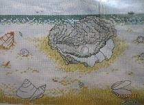Beach scene - Shells