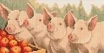 Fijne Fuif - Varkentjes - Piglets - Fine Feast - aida