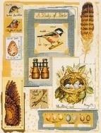 Bird Sampler