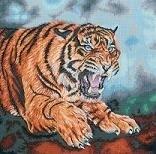 Kat Davies - Wild en Vrij - Tijger - Wild and Free - Tiger - aida
