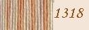Anchor perlé multicolor 5 - 25 meter - 1318 - Pearl 5 - 25 meters