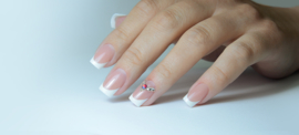 3 daagse training Nail revolution 27, 28 29 oktober