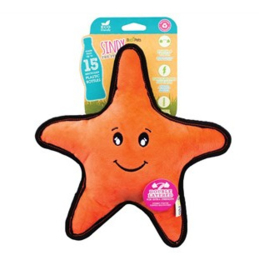 Sindy the Starfish