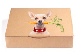 Startpakket  kleine hond - Proefzakjes