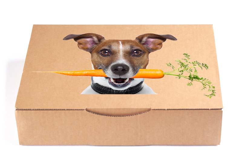 Startpakket hond - Proefzakjes