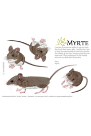 Myrte sticker Bosmuis