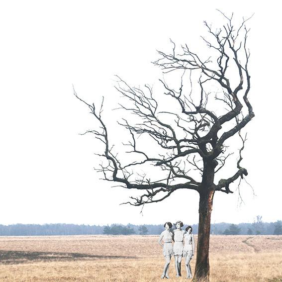 Margo Weijer, Treegirls collage(10x10cm)