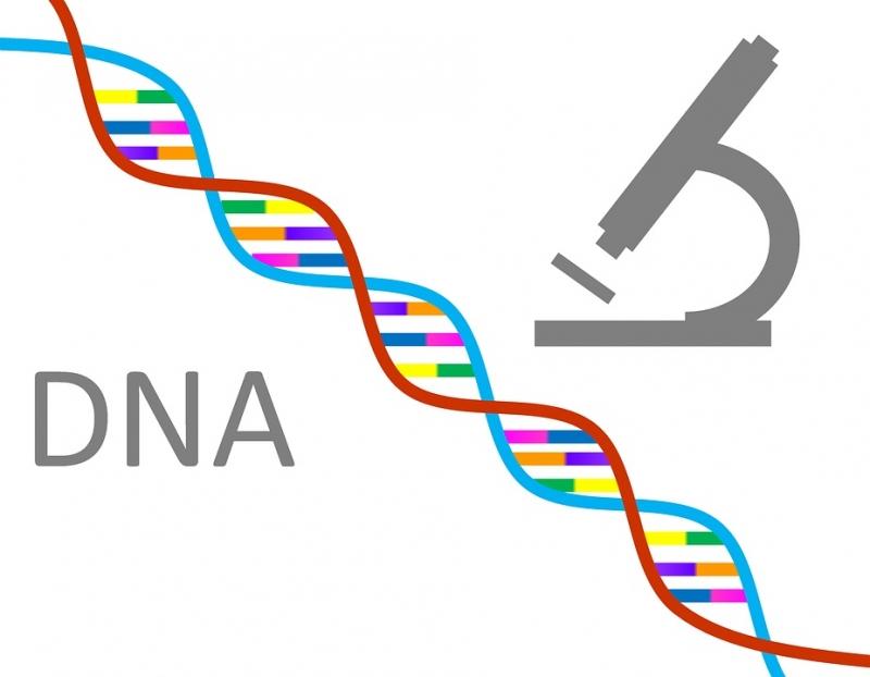 DNA Lifestyle onderzoek