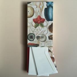 Handgemaakte bewaarbox met 10 stuks prachtige enveloppen met schelpen en schaaldieren en creme briefpapier