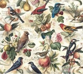 Prachtig decor papier met vintage vogel tekeningen, voor vele toepassingen