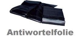 WILDFLOWER pakket (prijs v.a.)