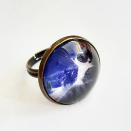 Cabochon ring cat MUSING...