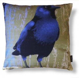 Bird cushion BLUE-BELLIED CROW cotton/velvet pillow cover